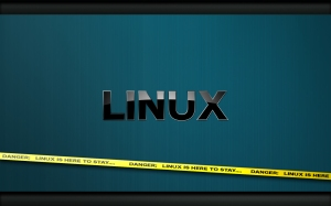Danger__Linux_is_here_to_stay_by_rubasu