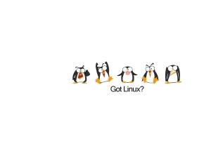 linux_tux_1680x1050_wallpaper_Wallpaper_1600x1200_www.wallpaperbeautiful.com