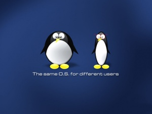 tux_wallpaper_linux_for_windows_desktop_before_and_after-800x600